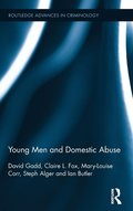 Young Men and Domestic Abuse