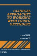 Clinical Approaches to Working with Young Offenders