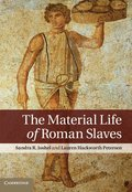 The Material Life of Roman Slaves