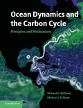 Ocean Dynamics and the Carbon Cycle