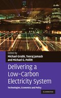 Delivering a Low Carbon Electricity System
