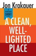 Clean, Well-Lighted Place