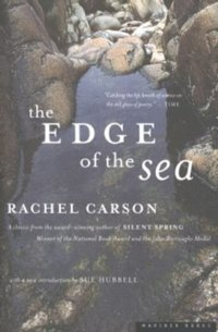 Edge of the Sea