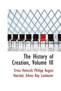 The History of Creation, Volume III