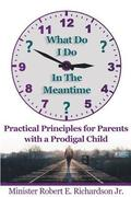 What Do I Do In The Meantime?: Practical Principles for Parents with a Prodigal Child