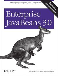 Enterprise JavaBeans 3.0