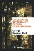 Stages in the Development of Sium Cicutaefolium
