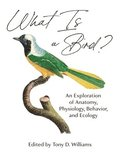 What Is A Bird? - An Exploration Of Anatomy, Physiology, Behavior, And Ecology