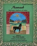 Nawaab: Marwari Stallion of India: The Great Quake Book 1