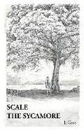 Scale the Sycamore