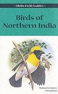 Birds of Northern India