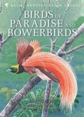 Birds of Paradise and Bowerbirds