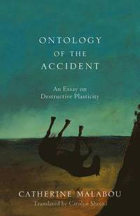 The Ontology of the Accident