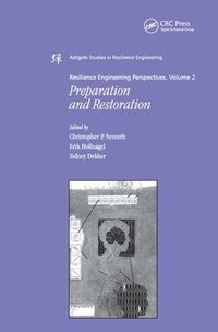 Resilience Engineering Perspectives, Volume 2