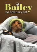 Bailey, No Ordinary Cat