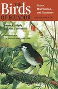 The Birds of Ecuador: Vol II Field Guide
