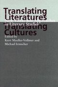 Translating Literatures, Translating Cultures