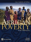African Poverty at the Millennium