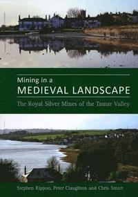 Mining in a Medieval Landscape