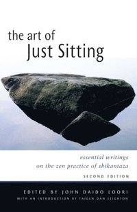 Art of Just Sitting