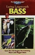 Luring Largemouth Bass