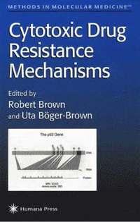 Ethics for Life Scientists - Michiel Korthals, Robert J