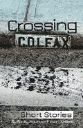 Crossing Colfax: Short Stories by Rocky Mountain Fiction Writers