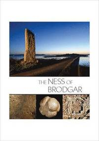 The Ness of Brodgar