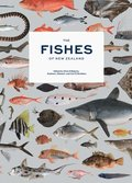 Fishes of New Zealand, The