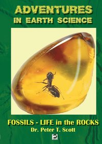 Fossils- Life in the Rocks