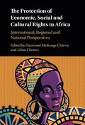 The Protection of Economic, Social and Cultural Rights in Africa