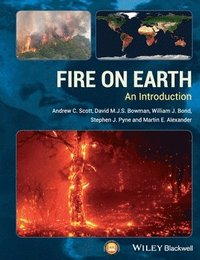 Fire on Earth