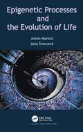 Epigenetic Processes and Evolution of Life