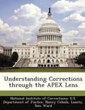 Understanding Corrections Through the Apex Lens