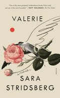 Valerie: Or, the Faculty of Dreams: A Novel
