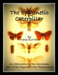 the epigenetic caterpillar an alternative to the neo darwinian view of the peppered moth phenomenon maria b o hare
