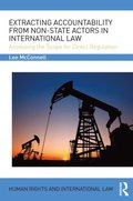 Extracting Accountability from Non-State Actors in International Law