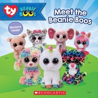 Meet The Beanie Boos (Beanie Boos)