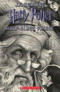 Harry Potter and the Half-Blood Prince, Volume 6