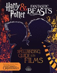 Harry Potter &; Fantastic Beasts: A Spellbinding Guide to the Films of the Wizarding World