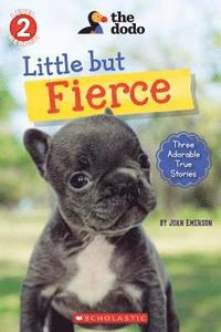 Little But Fierce (The Dodo: Scholastic Reader, Level 2)