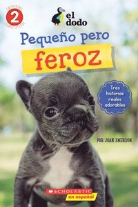 El Dodo: Pequeno Pero Feroz (The Dodo: Little But Fierce)