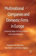 Multinational Companies and Domestic Firms in Europe