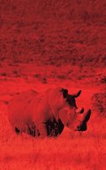 Alive! white rhino - Red dutotone - Photo Art Notebooks (5 x 8 series)