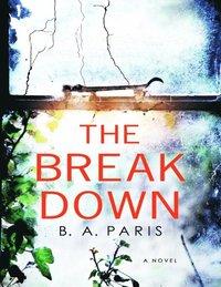 Breakdown: A Novel