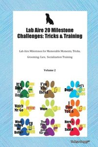 Lab Aire 20 Milestone Challenges