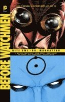 Before Watchmen Nite Owl/Dr. Manhattan