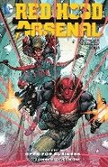 Red Hood/Arsenal Vol. 1