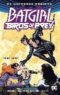 Batgirl &; The Birds Of Prey Vol. 2 Source Code (Rebirth)