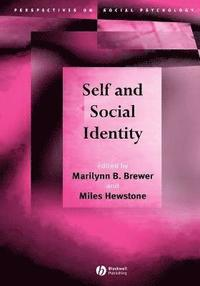 multiple social categorization hewstone miles crisp richard j